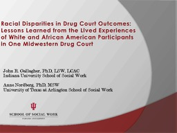 Racial Disparities in Drug Court Outcomes: Lessons Learned from the